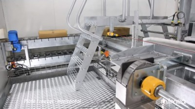 Image still of linear chain application in frozen food factory