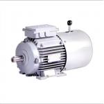 Siemens brake motor
